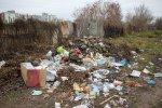 Народ против мусора и злых чиновников